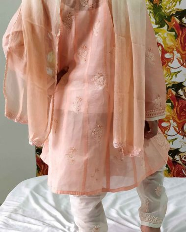 back image of chikankari anarkali set