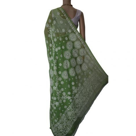 Image of Chikankari saree palou